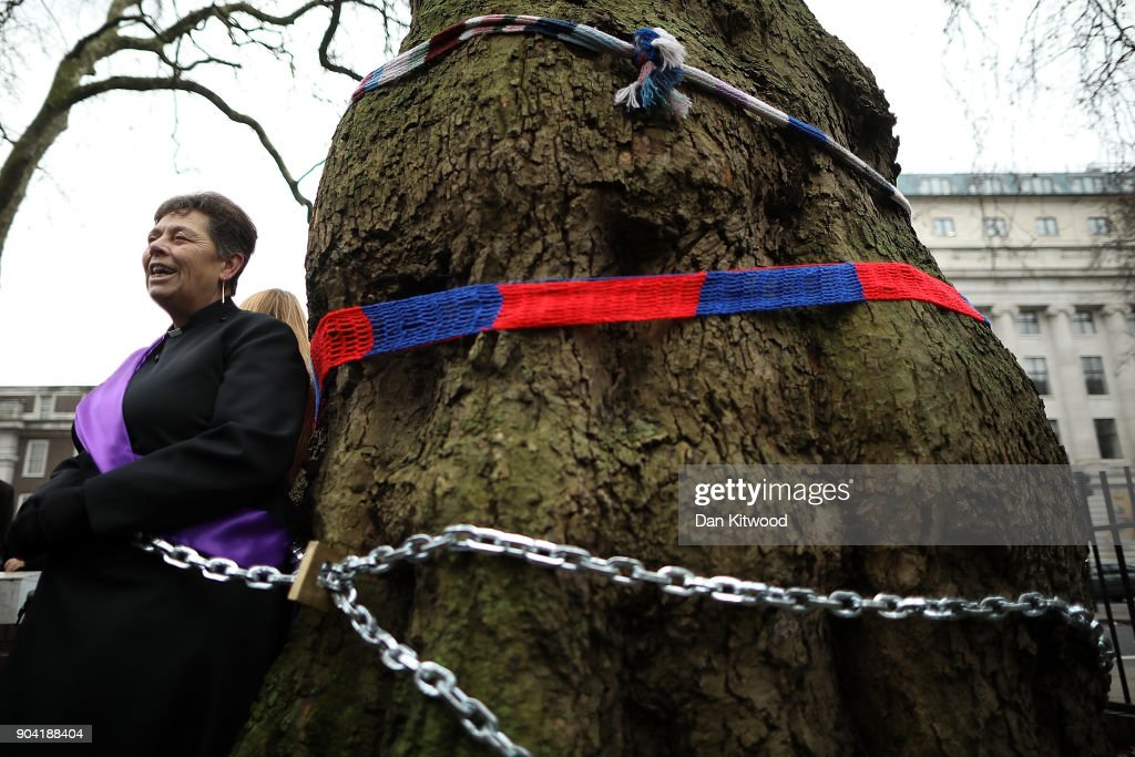 Vicar of St Pancras church Anne Stevens, along another protester is chained to a tree outside Euston Station on January 12, 2018 in London, England. The two hour protest was against the planned clearing of the trees in the area to make way for the controversial HS2 high-speed rail network that is to link London, Birmingham, Leeds and Manchester.