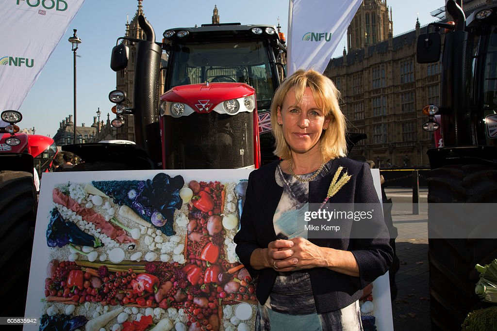 NFU Vice President Minette Batters at the National Farmers Union (NFU) took machinery, produce, farmers and staff to Westminster to encourage Members of Parliament to back British farming, post Brexit on 14th September 2016 in London, United Kingdom. MPs were encouraged to sign the NFUs pledge and wear a British wheat and wool pin badge to show their support.