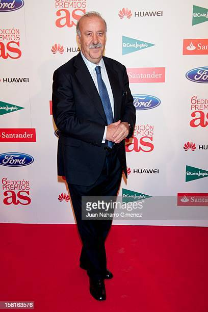 Vicente del Bosque attends As del Deporte awards 2012 at Palace Hotel on December 10 2012 in Madrid Spain