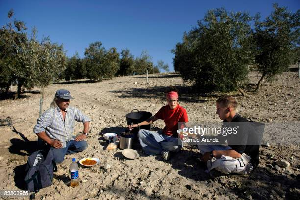Vicente Urbano sits in the olive grove with his son Vicente and his daughter Virginia while having lunch November 21 2008 in Carteya La Nueva near...