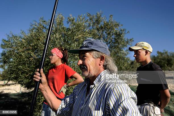 Vicente Urbano stands with his son Vicente and his daughter Virginia on the olive grove where they are contracted to work November 21 2008 in Carteya...