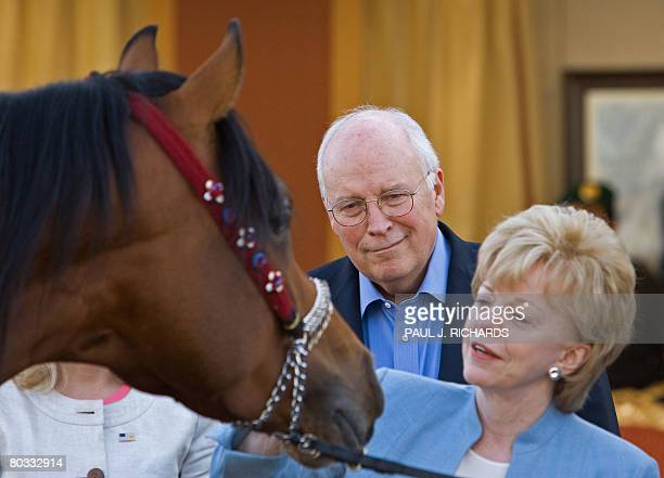 US VicePresident Dick Cheney and his wife Lynn look at one of Saudi Arabia King Abdullah bin Abdulaziz's famous Arabian horses on March 21 2008...