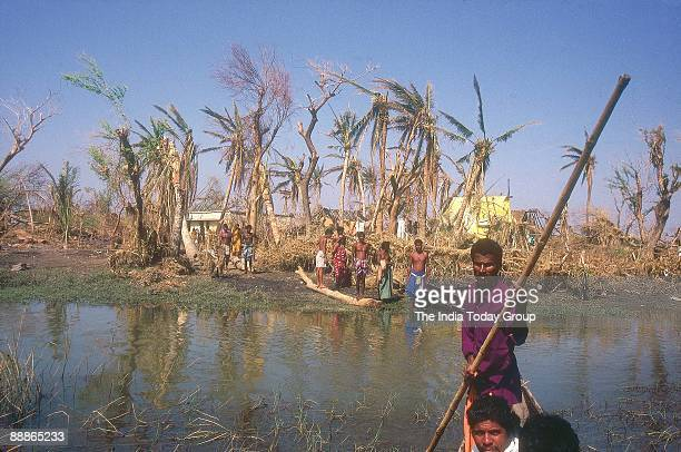 Victims waiting on the bank of water pond where damaged Trees are lying after the Cyclone in Orissa