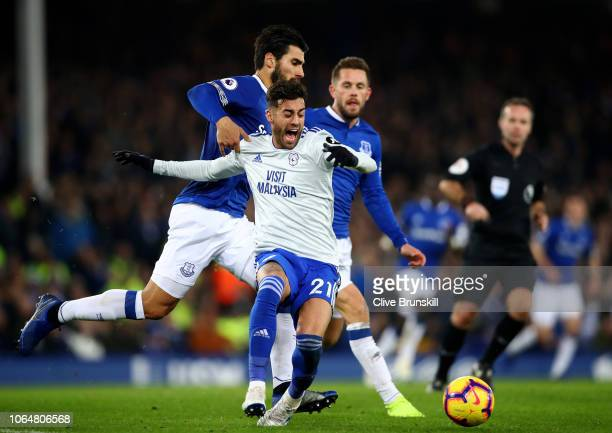 Victor Camarasa of Cardiff City is fouled during the Premier League match between Everton FC and Cardiff City at Goodison Park on November 24 2018 in...