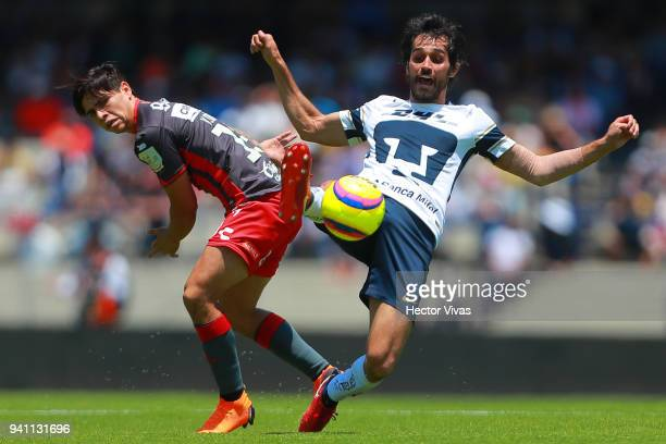 Victor Davila of Necaxa struggles for the ball with Alejandro Arribas of Pumas during the 13th round match between Pumas UNAM and Necaxa as part of...