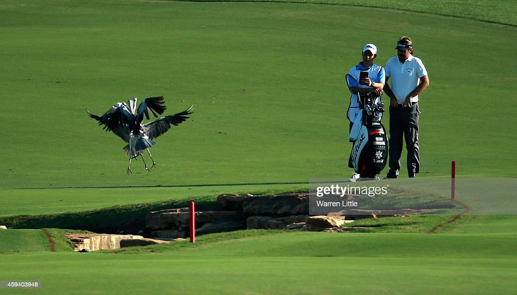 Victor Duduisson of France stands with his caddie on the 18th fairway as two birds frolic during the third round of the DP World Tour Championship at Jumeirah Golf Estates on November 22 on November 22, 2014 in Dubai, United Arab Emirates.