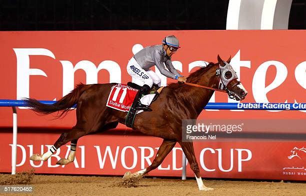 Victor Espinoza rides California Chrome to victory in the Dubai World Cup Sponsored By Emirates Airline as part of the Dubai World Cup at Meydan...