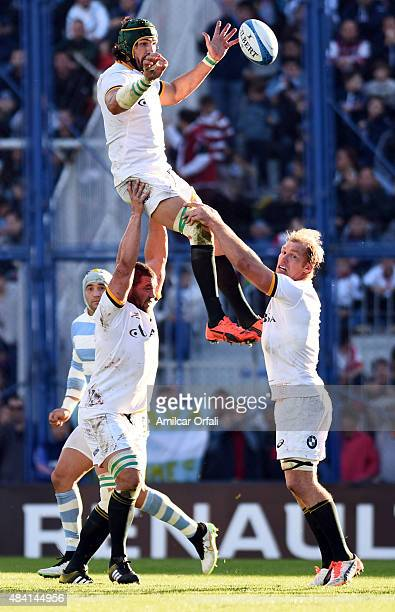 Victor Matfield of South Africa jumps for a lineout ball during the International Test match between Argentina and South Africa at Jose Amalfitani...