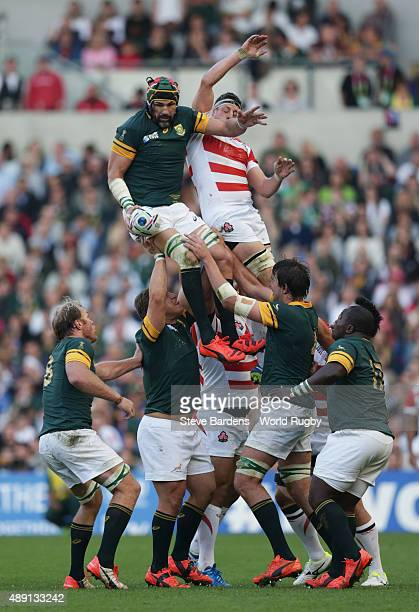 Victor Matfield of South Africa wins a lineout during the 2015 Rugby World Cup Pool B match between South Africa and Japan at Brighton Community...
