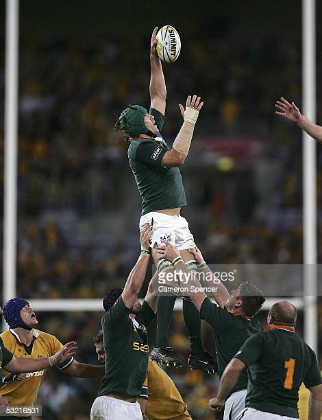 Victor Matfield of the Springboks takes a lineout ball during the test match between the Australian Wallabies and the South African Springboks at...