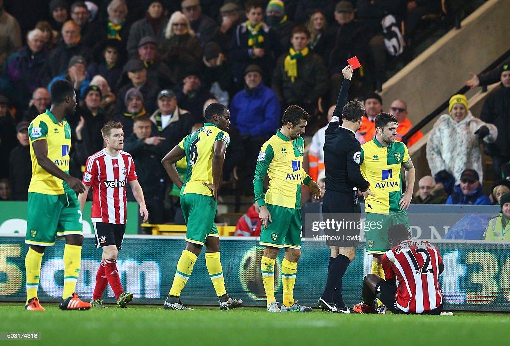 Norwich City v Southampton - Premier League : News Photo