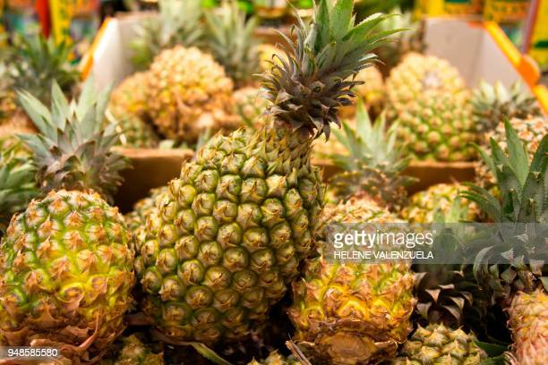 'Victoria' ananas are pictured at the fruit and vegetable department of an 'O Marche' supermarket in SaintFrancois on the French overseas territory...