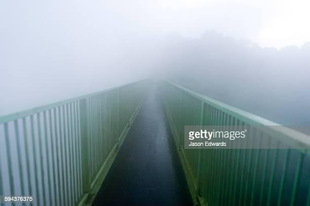 Mist shrouds a foot bridge spanning a gorge at Victoria Falls.