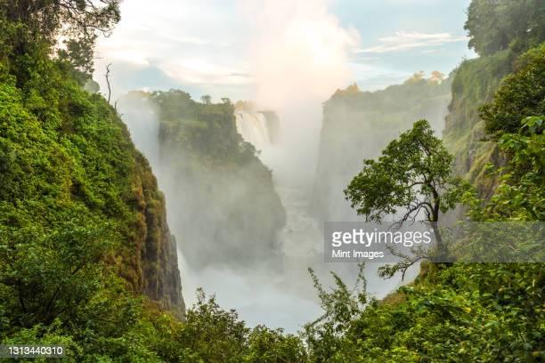 victoria falls, the zambezi river waterfalls viewed from the cliffs of zimbabwe - zambezi river stock pictures, royalty-free photos & images