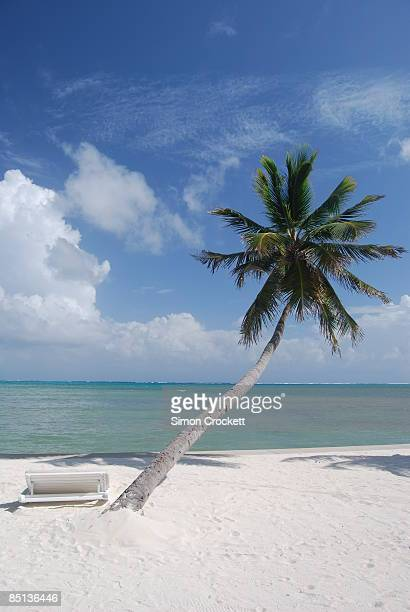 victoria house, ambergris caye - simon crockett stock pictures, royalty-free photos & images