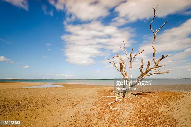 Victoria point Redland bay