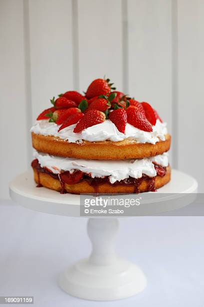 victoria sponge cake - sponge cake stock pictures, royalty-free photos & images