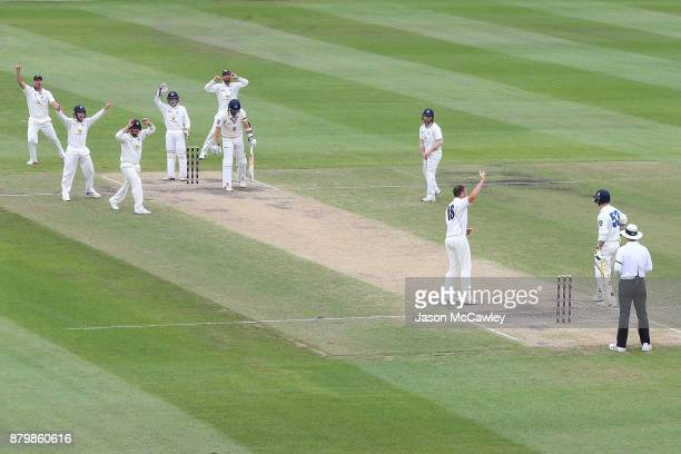 Victorian players appeal the wicket of Sean Abbott of NSW during day four of the Sheffield Shield match between New South Wales and Victoria at North...