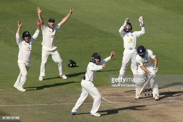 Victorian players celebrate the dismissal of Stephen O'Keefe of NSW off the bowling of Glenn Maxwell of Victoria during day four of the Sheffield...