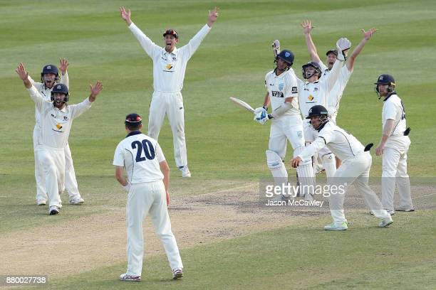 Victorian players unsucessfully appeal the wicket of Trent Copeland of NSW during day four of the Sheffield Shield match between New South Wales and...
