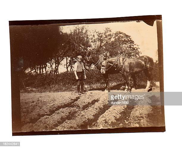 Victorian Ploughman - Old Photograph