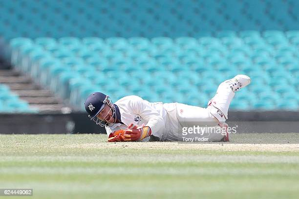 Victorian wicketkeeper Matthew Wade spills a catch during day four of the Sheffield Shield match between New South Wales and Victoria at Sydney...