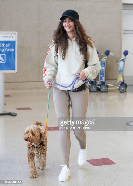Victoria's Secret Angel Taylor Hill is seen with her dog, Tate on January 21, 2020 in Los Angeles, California.