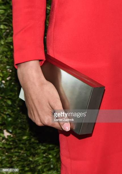 Victoria's Secret model Jourdana Phillips clutch detail attends the 2017 Pencils of Promise Gala at Central Park on December 7 2017 in New York City