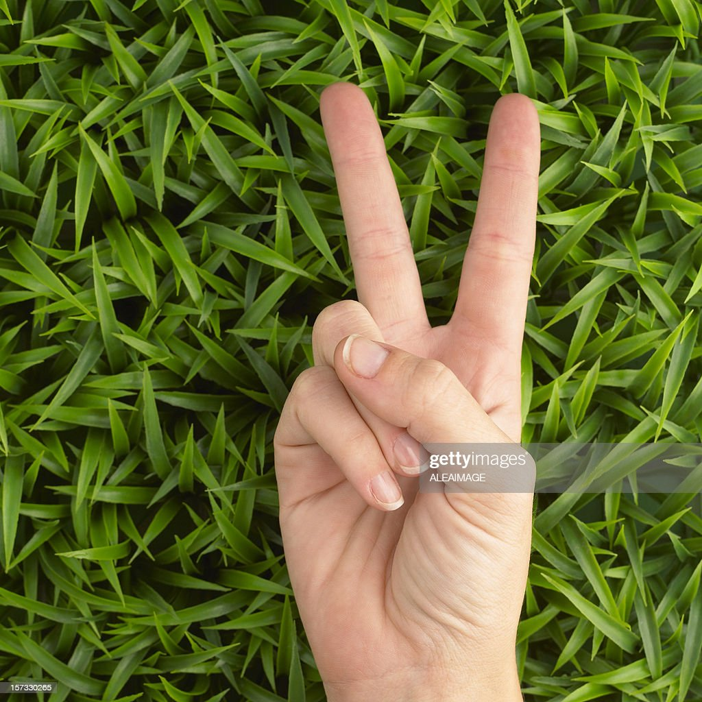 Victory sign on grass : Stock Photo