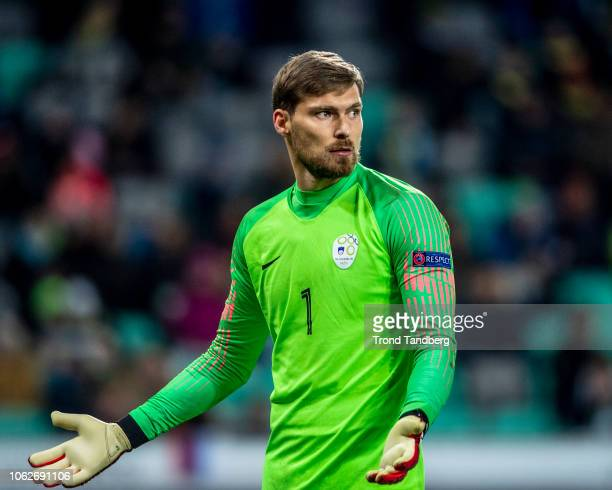 Vid Belec of Slovenia during the UEFA Nations League C group three match between Slovenia and Norway at Stadion Stozice on November 16 2018 in...