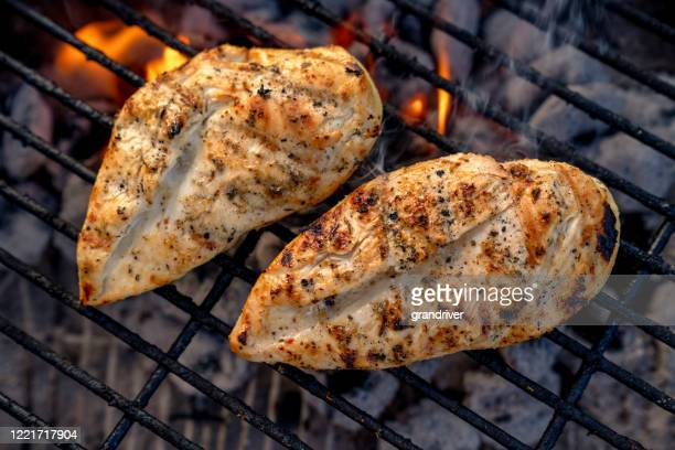 video clip of juicy seasoned chicken breasts, pollo asado on a hot charcoal grill - raw food stock pictures, royalty-free photos & images