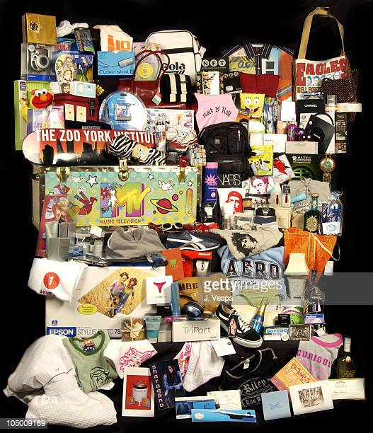 Video Music Awards Celebrity Gift Basket Produced by Backstage Creations and On 3 Productions
