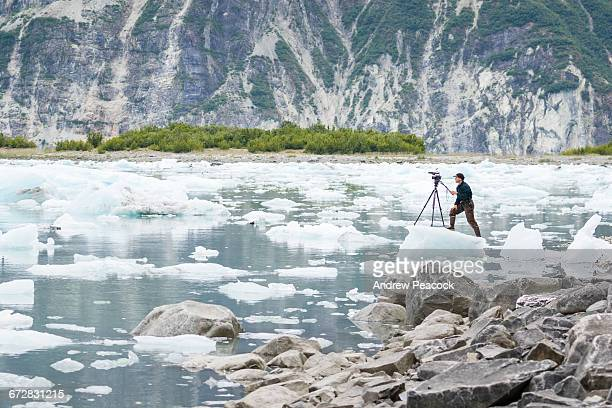 videographer on ice in mcbride inlet. - film crew stock pictures, royalty-free photos & images