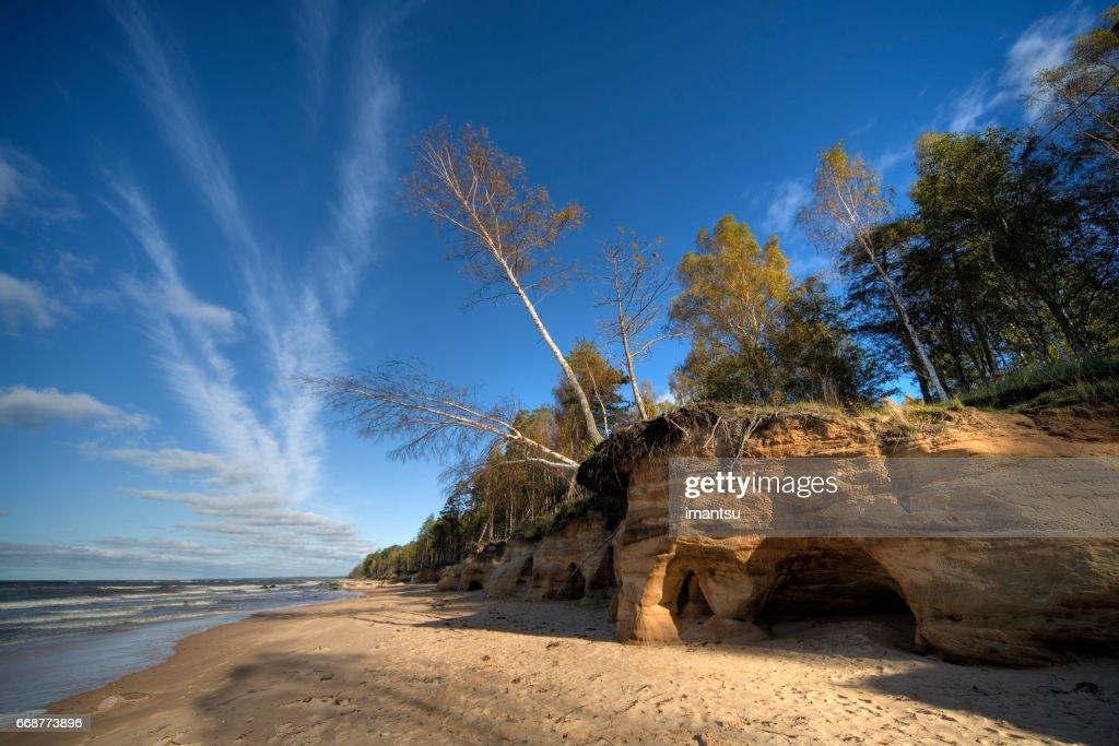 Vidzeme Stony Seashore : Stock Photo