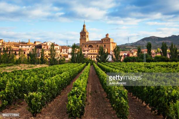 viñedo y pueblo de briñas en la comarca de haro - vineyard and village of briñas in the district of haro - spain stock pictures, royalty-free photos & images