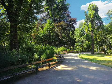 Vienna Stadtpark on a summer day - gettyimageskorea