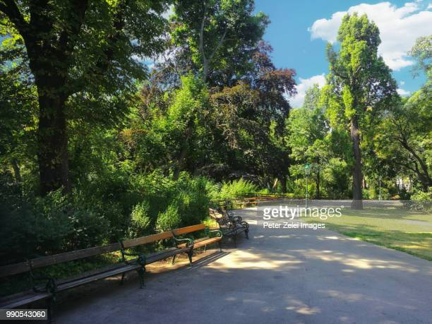 vienna stadtpark on a summer day - park stock-fotos und bilder