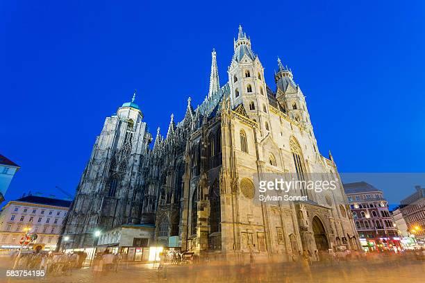 vienna, view of st. stephens cathedral - catedral - fotografias e filmes do acervo