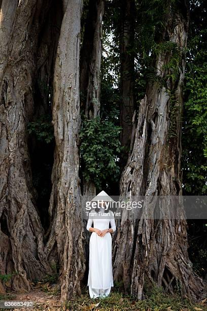 Vietnam Ao Dai - Vietnamese woman in Ao Dai standing near banyan trees