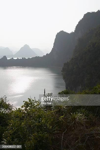 Vietnam, Halong Bay, lush foliage on bluffs beside sea, elevated view