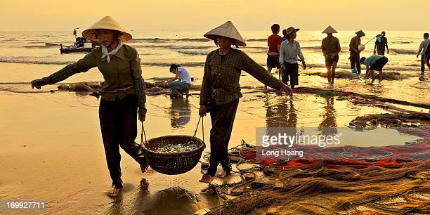 CONTENT] Vietnam images Seascape landscape nature Fishing Working people Hai Hoa Tinh Gia Thanh Hoa