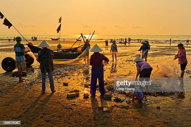 Vietnam images - Seascape-Landscape - Nature - Fishing - working people - Sam Son - Thanh Hoa - Fishing village - draw up a net.