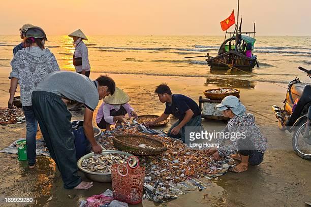 Vietnam images - Seascape-Landscape - Nature - Fishing - working people - Van Chai - Thanh Hoa - Fishing village.