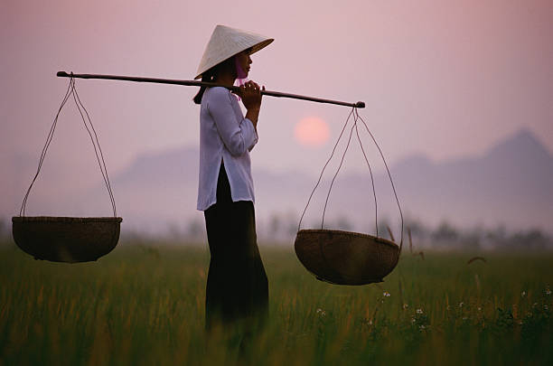 Vietnam, Near Hanoi, young woman holding baskets in rice paddy