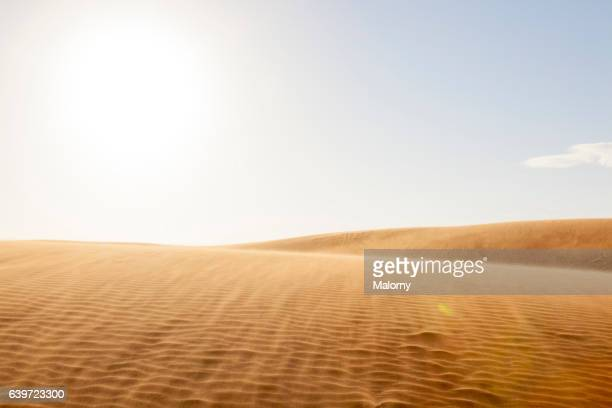 vietnam, sand dunes - duna foto e immagini stock