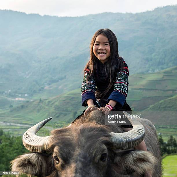 Vietnam, young girl sitting on water buffalo
