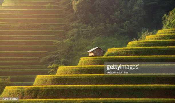 Vietnamese beautiful landscape