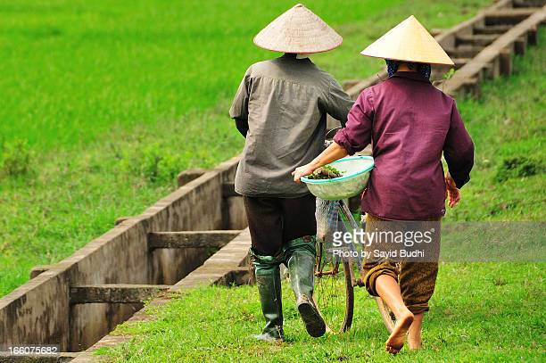 Vietnamese farmers going to work