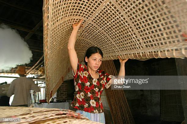 Vietnamese girl carries 'Mien' noodles to dry Mien is made from arrowroot a kind of tuber plant similar to cassava in Cu Da village Ha Tay province...