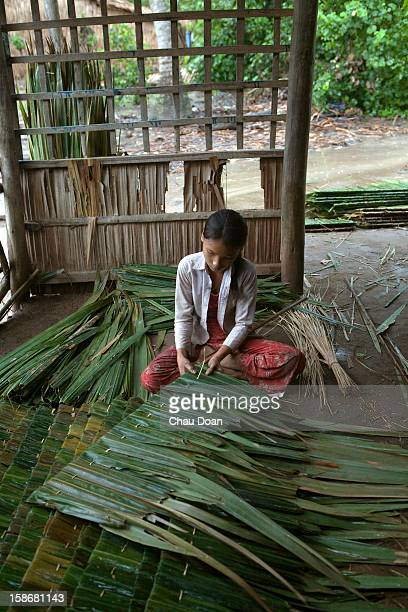 Vietnamese girl prepares a kind of local leaves used for roofing in Hai Thu hamlet Long Hoa commune Chau Thanh district Hai Thu hamlet belongs to a...
